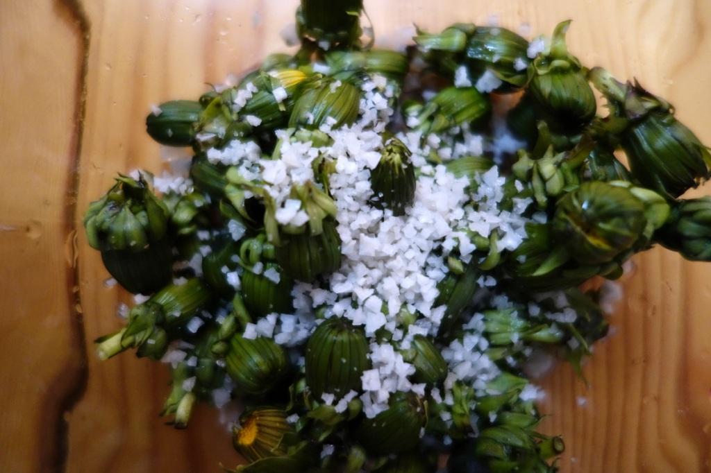 Salted dandelion buds